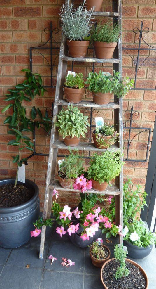 κήπος ξύλινη σκάλα1
