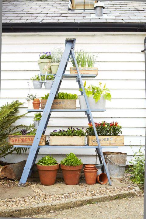 κήπος ξύλινη σκάλα4