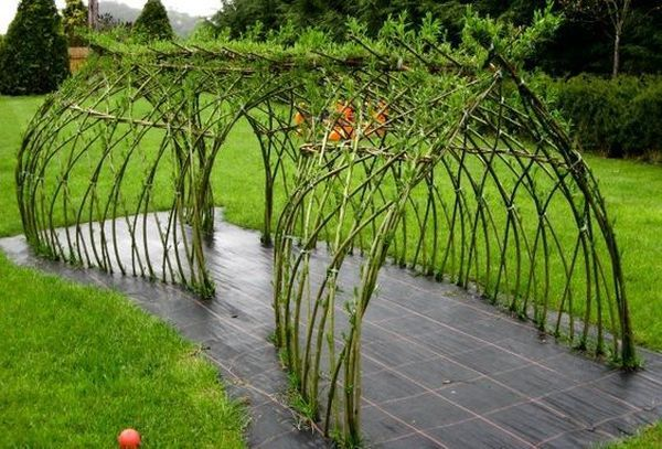 πράσινες τέντες από κλαδιά ιτιάς4