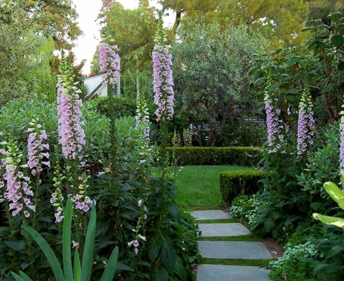 Μεσογειακός κήπος ιδέες17