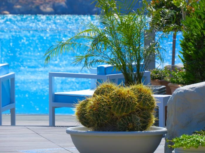 Μεσογειακός κήπος ιδέες18