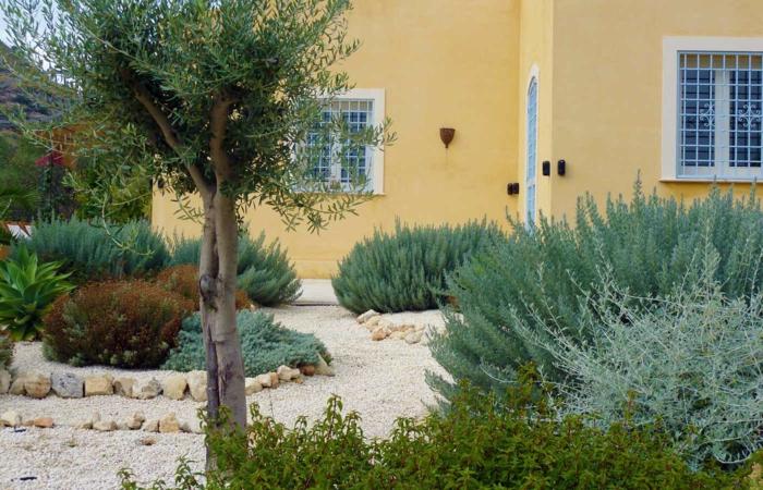 Μεσογειακός κήπος ιδέες19