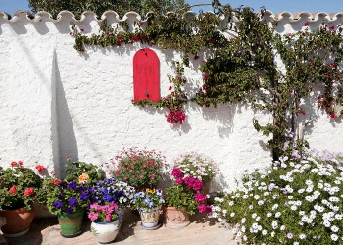 Μεσογειακός κήπος ιδέες35