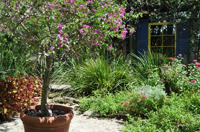 Μεσογειακός κήπος ιδέες41