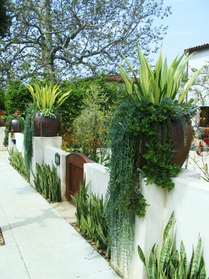 Μεσογειακός κήπος ιδέες49