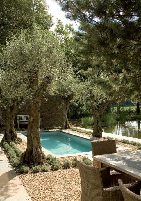 Μεσογειακός κήπος ιδέες60