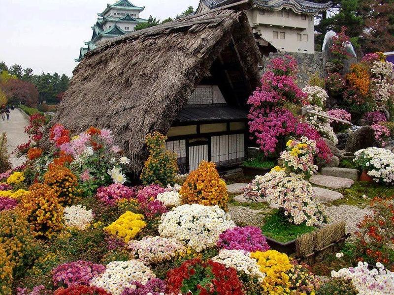 διακοσμήσεις κήπων (25)