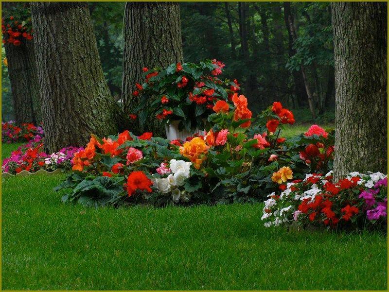 διακοσμήσεις κήπων (31)