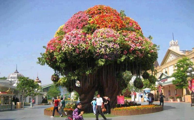 διακοσμήσεις κήπων (8)