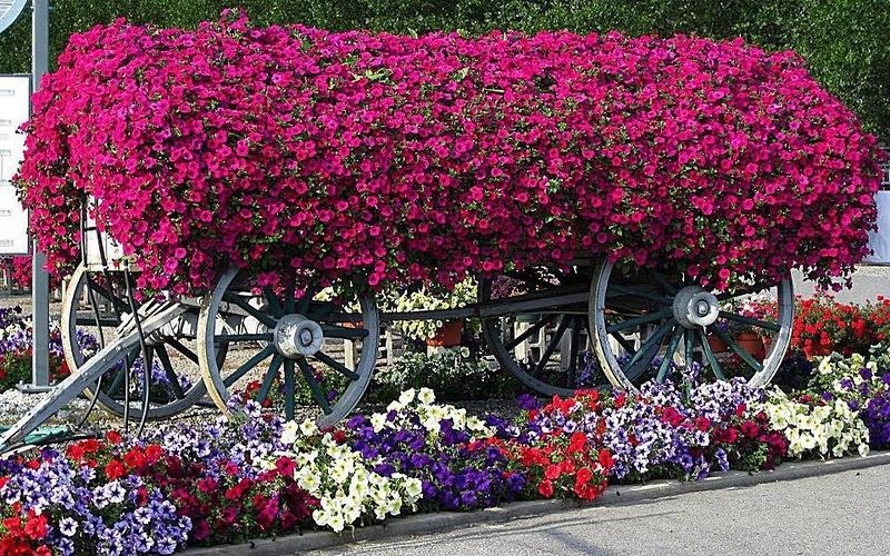 διακοσμήσεις κήπων (9)