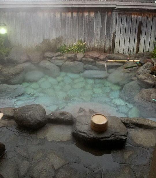 μικρή πισίνα στον κήπο11