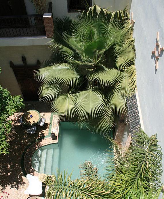 μικρή πισίνα στον κήπο23