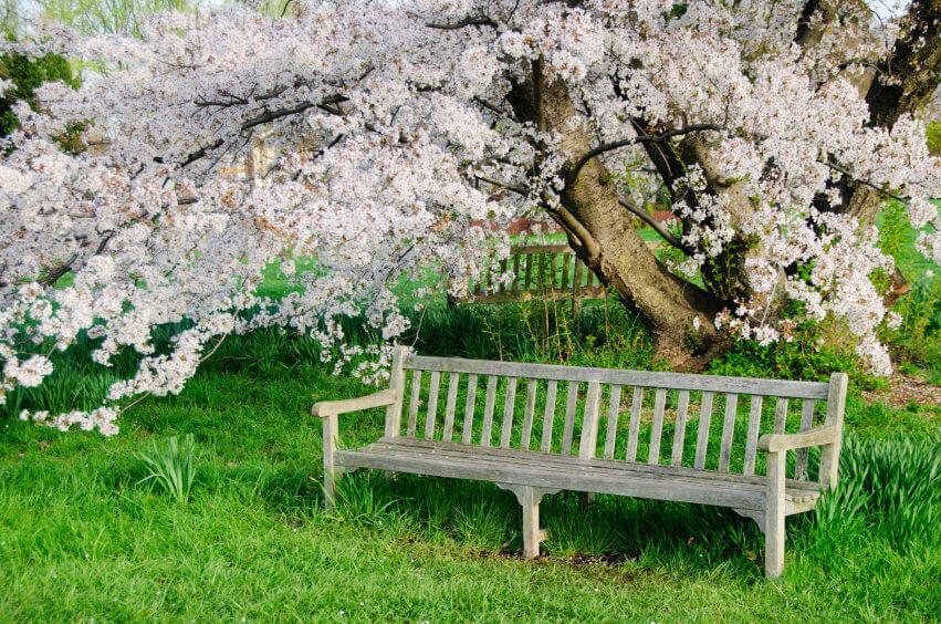 παγκάκια κήπου3