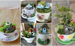 Diy μικροσκοπικοί κήποι