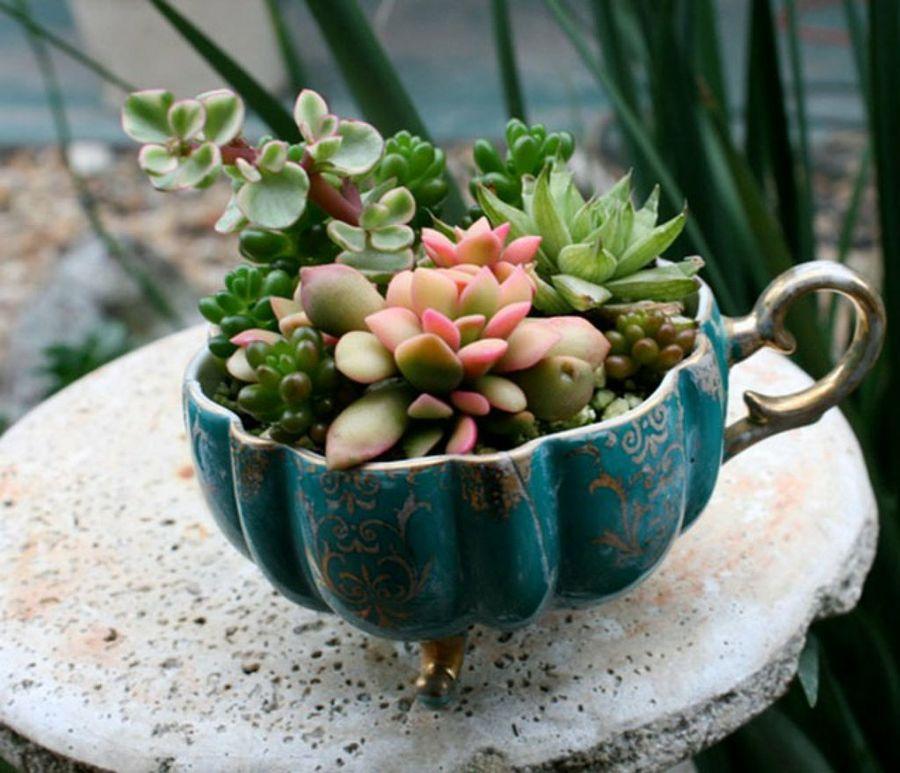 Diy μικροσκοπικοί κήποι8