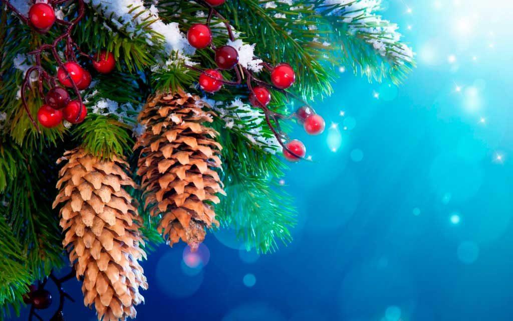 Χριστουγεννιάτικες εικόνες29
