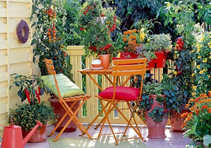 μπαλκόνι-φυτά-λουλούδια11