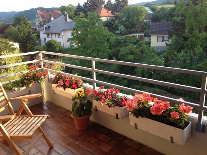 μπαλκόνι-φυτά-λουλούδια13