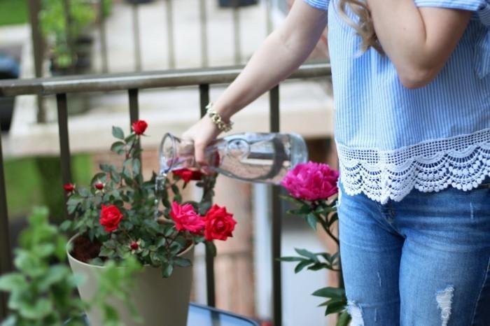 μπαλκόνι-φυτά-λουλούδια16