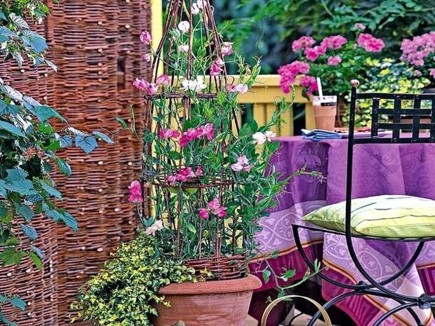 μπαλκόνι-φυτά-λουλούδια30