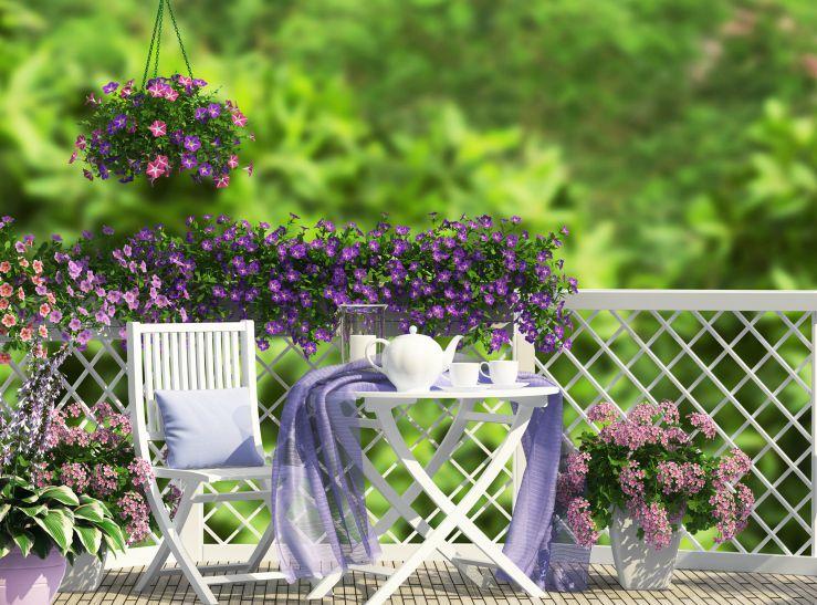μπαλκόνι-φυτά-λουλούδια33