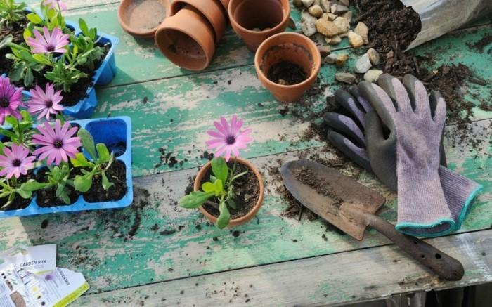 μπαλκόνι-φυτά-λουλούδια4