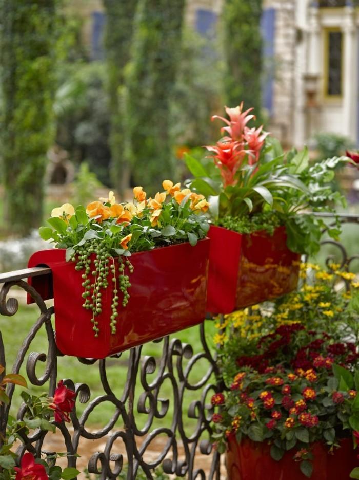 μπαλκόνι-φυτά-λουλούδια5