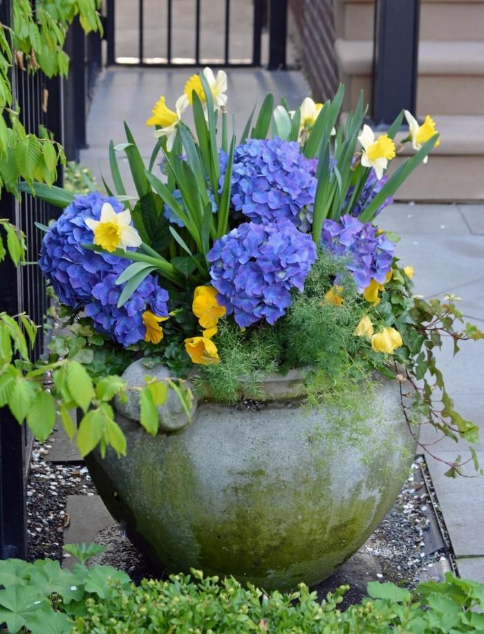 μπαλκόνι-φυτά-λουλούδια9