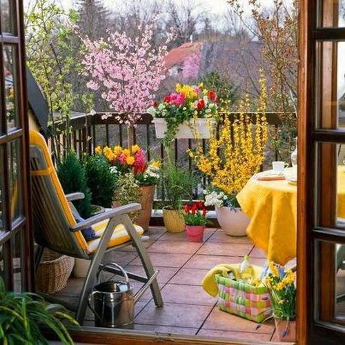 Λουλούδια στο μπαλκόνι11