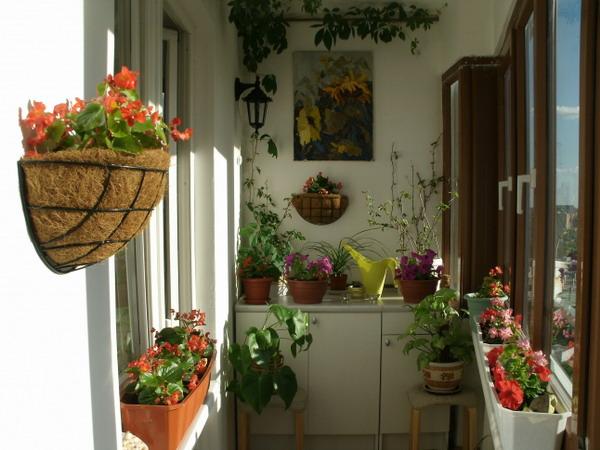 Λουλούδια στο μπαλκόνι25