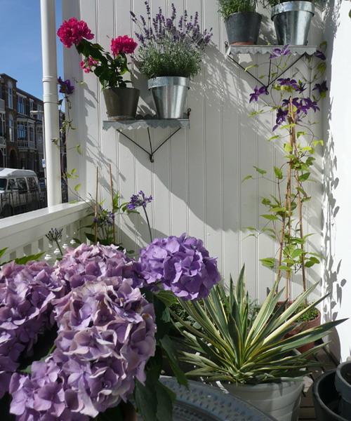 Λουλούδια στο μπαλκόνι26