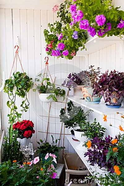 Λουλούδια στο μπαλκόνι28