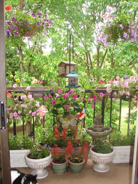 Λουλούδια στο μπαλκόνι4