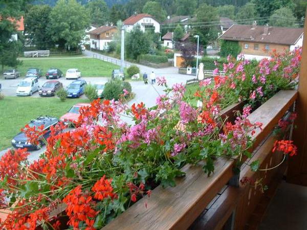 Λουλούδια στο μπαλκόνι44