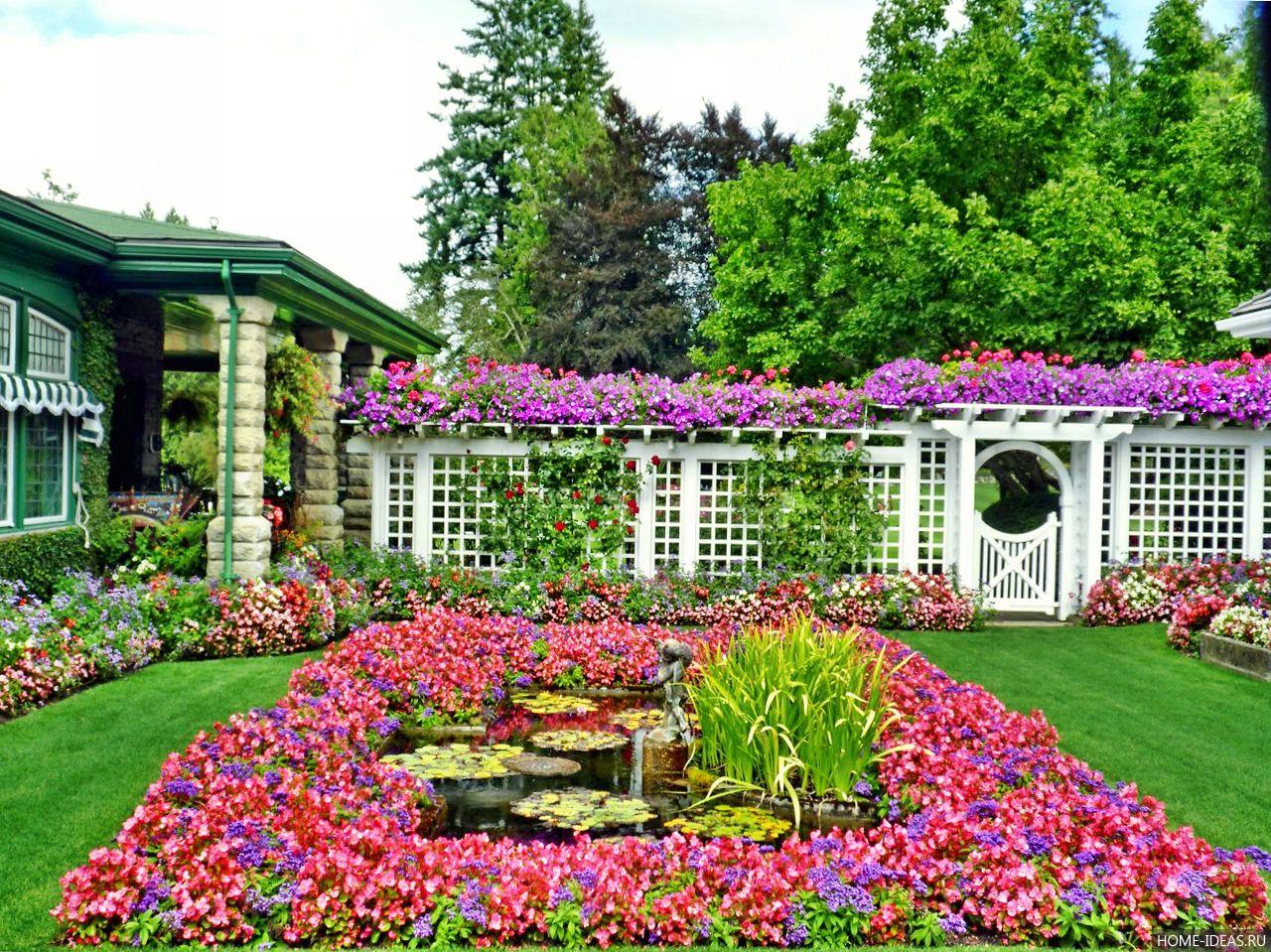Λουλούδια μπροστά από το σπίτι17