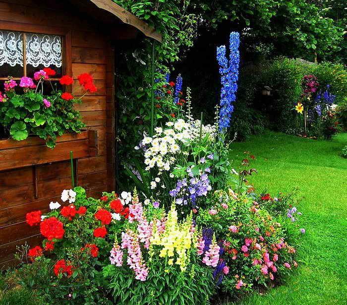 Λουλούδια μπροστά από το σπίτι22