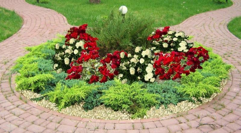 Λουλούδια μπροστά από το σπίτι4
