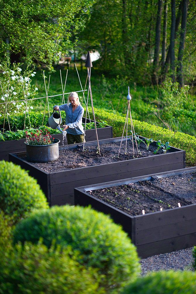 αστικός κήπος λαχανικών ιδέες11
