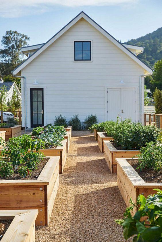 αστικός κήπος λαχανικών ιδέες12