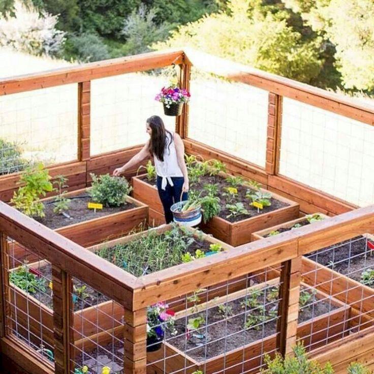 αστικός κήπος λαχανικών ιδέες14