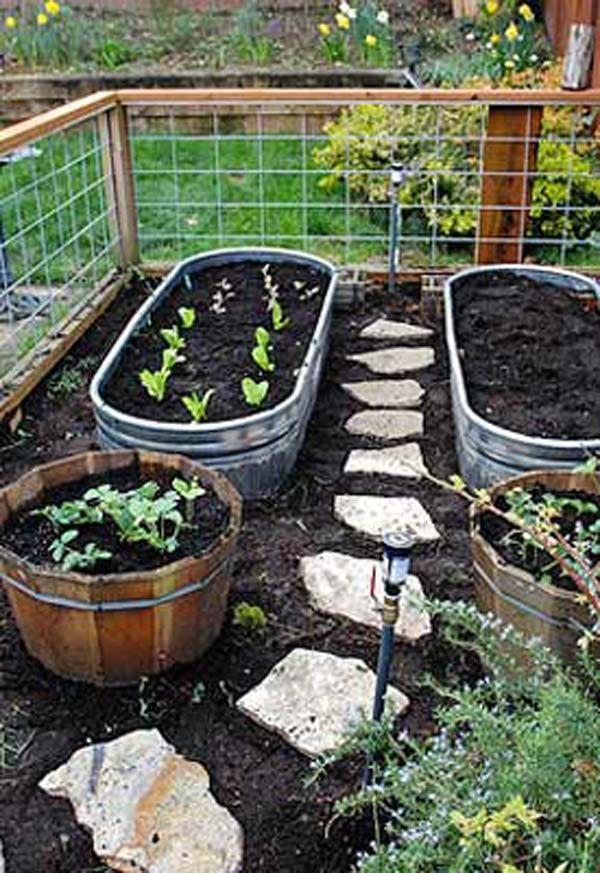 αστικός κήπος λαχανικών ιδέες2