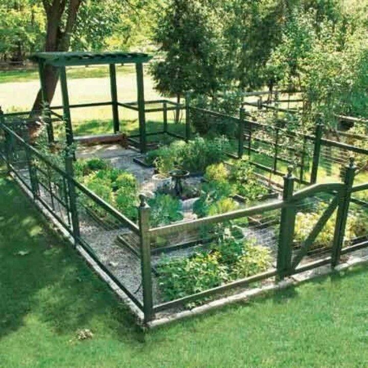 αστικός κήπος λαχανικών ιδέες6