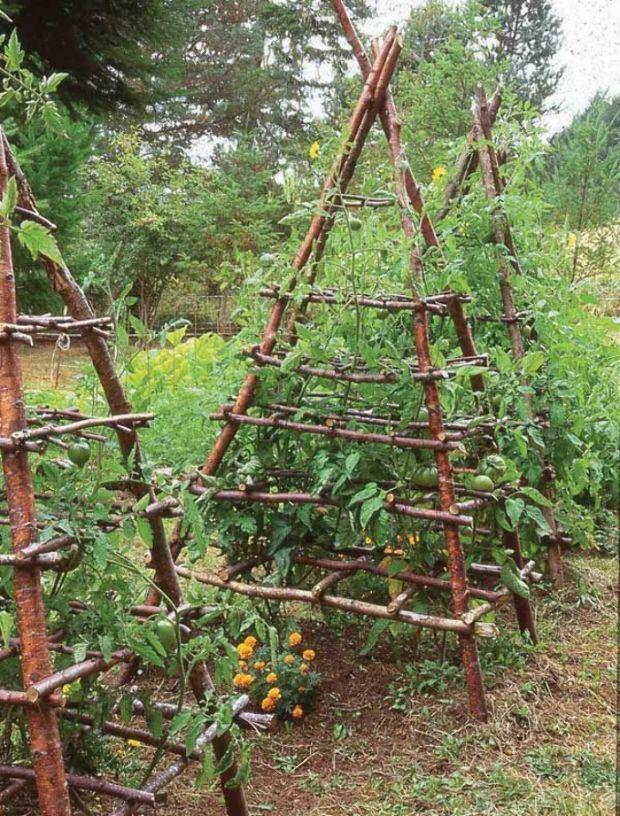αστικός κήπος λαχανικών ιδέες7