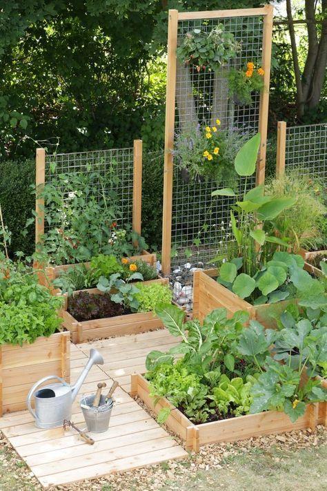 αστικός κήπος λαχανικών ιδέες8