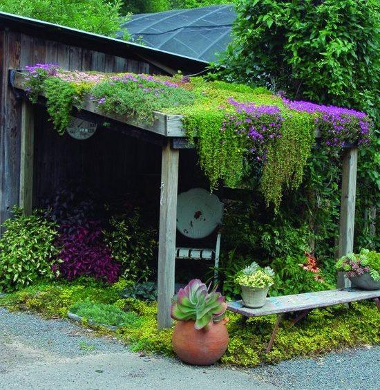 σχεδιάστε ένα μοναδικό στυλ κήπου16