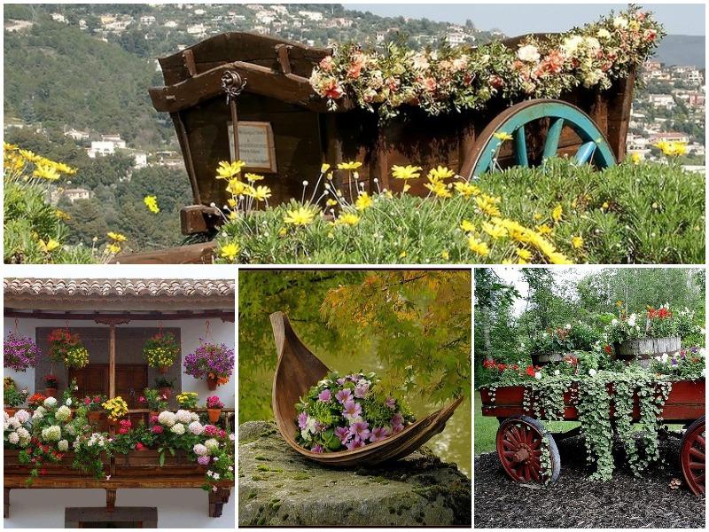 Αρωματική ομορφιά σε παρτέρια κήπου: 25 ιδιαίτερες ιδέες για διακόσμηση