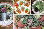 Καταπληκτικά DIY παρτεράκια και γλάστρες από παλιά ελαστικά - Απίθανες ιδέες για να απογειώσετε τον κήπο σας οικονομικά