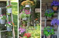 Ρουστίκ - χωριάτικη DIY διακόσμηση κήπου με μια παλιά ξύλινη σκάλα