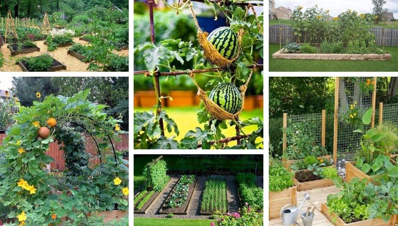 45 Προσιτές DIY ιδέες σχεδιασμού ενός κήπου λαχανικών