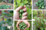 40 Εκπληκτικές ιδέες με ευάερα και άνετα ρουστίκ σαλονάκια για έμπνευση